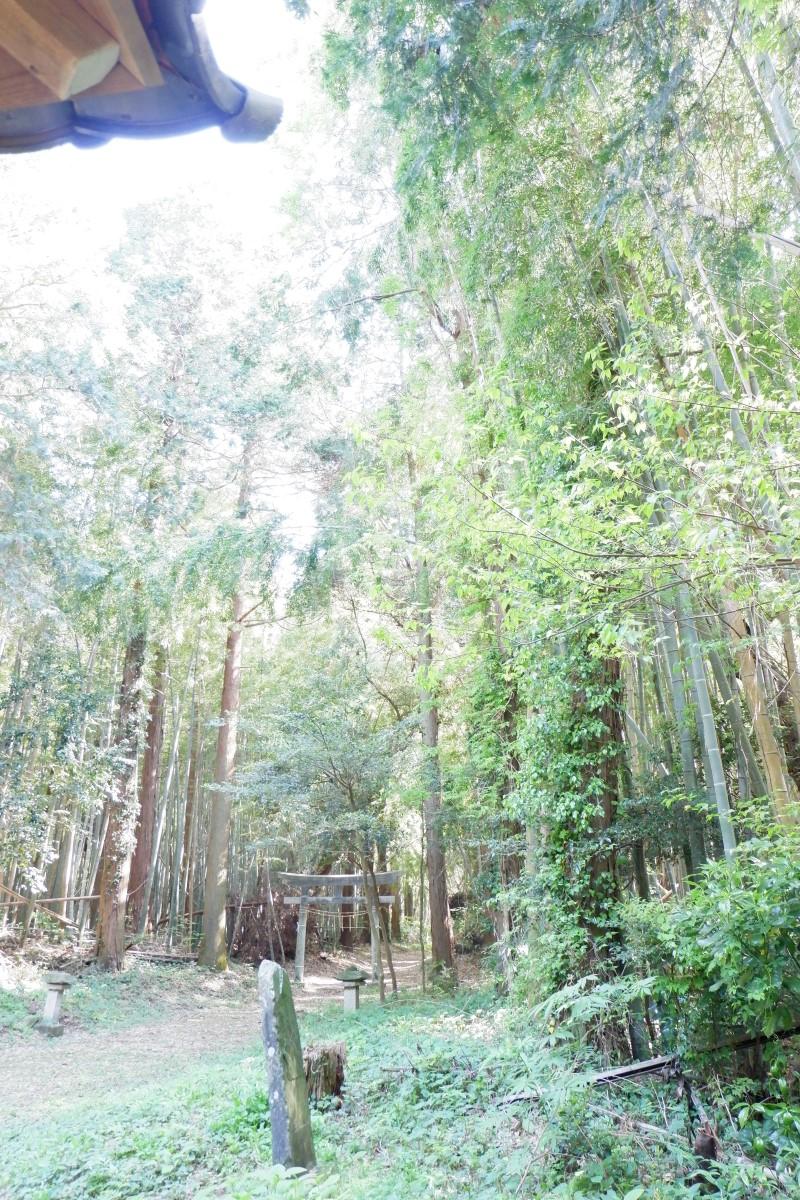 f:id:YumiAIKAWA:20210422091011j:plain