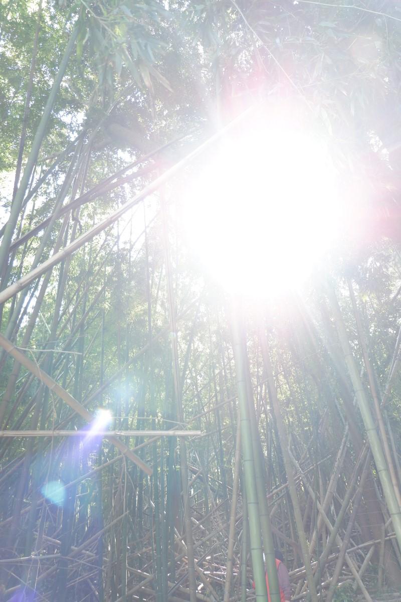 f:id:YumiAIKAWA:20210422105011j:plain