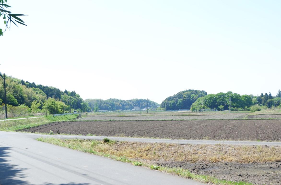 f:id:YumiAIKAWA:20210422174307j:plain