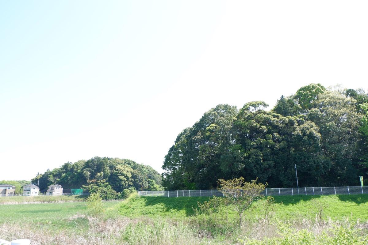 f:id:YumiAIKAWA:20210422174932j:plain