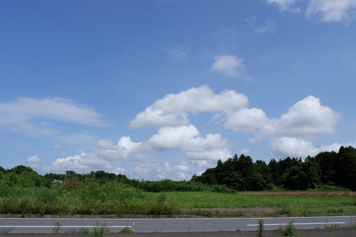 f:id:YumiAIKAWA:20210715015343j:plain