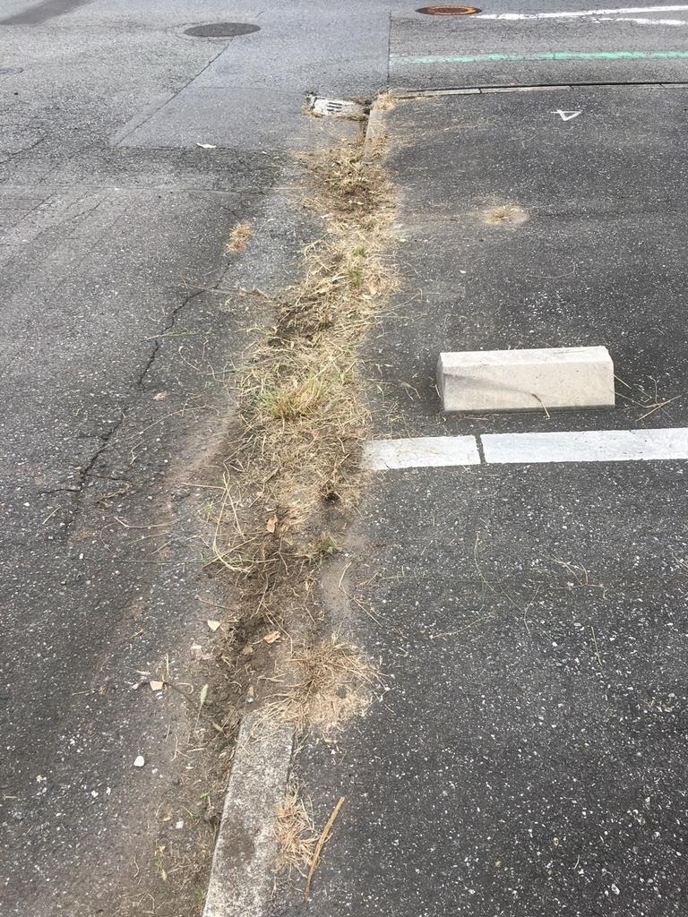 草刈り後の駐車場