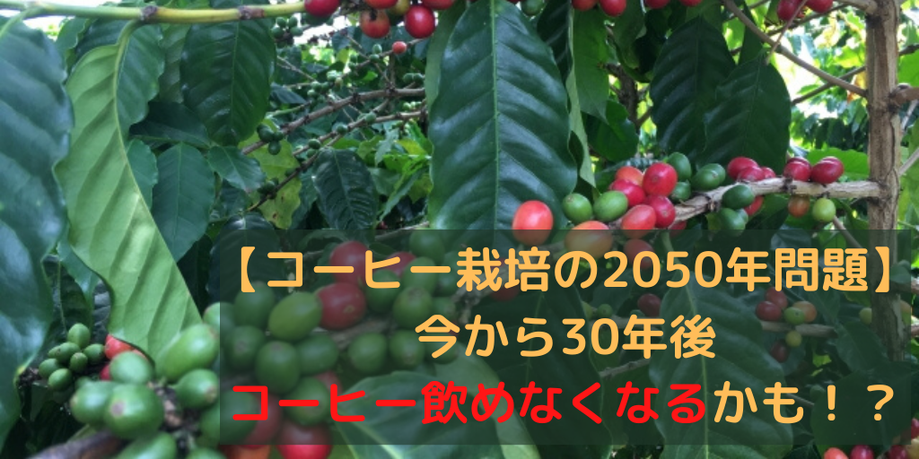コーヒーの2050年問題