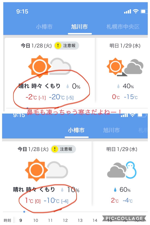 f:id:Yumikoema:20200128093203j:image