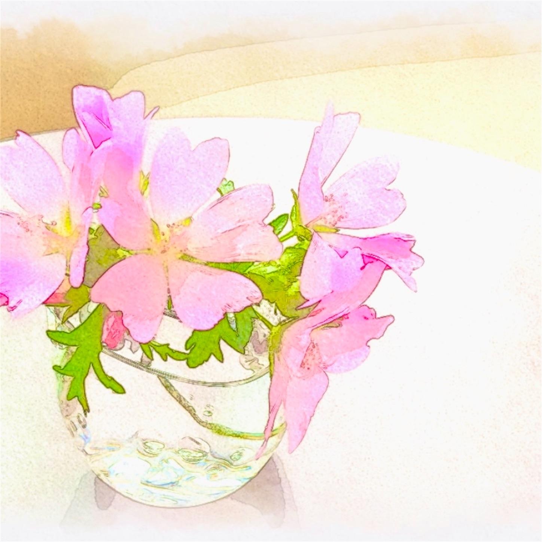 f:id:Yumikoema:20210726104027j:image