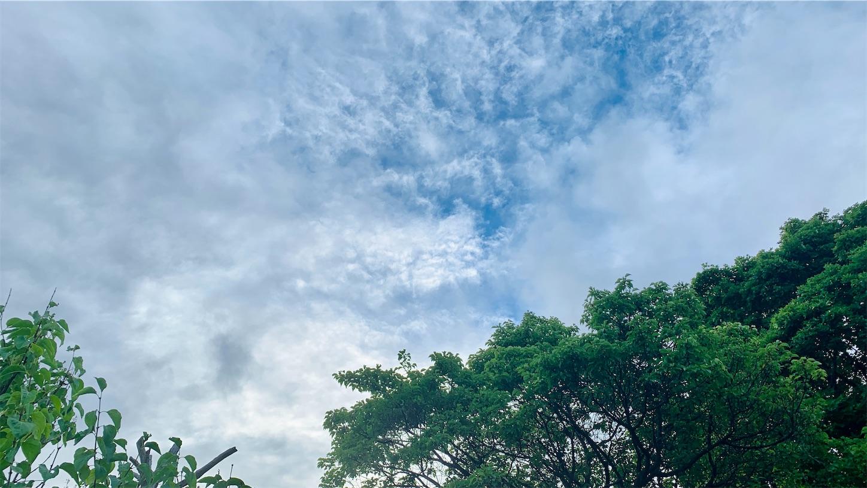 f:id:Yumikoema:20210802152604j:image