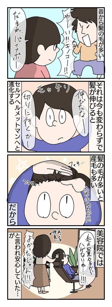 f:id:YuruFuwaTa:20190301170738p:plain