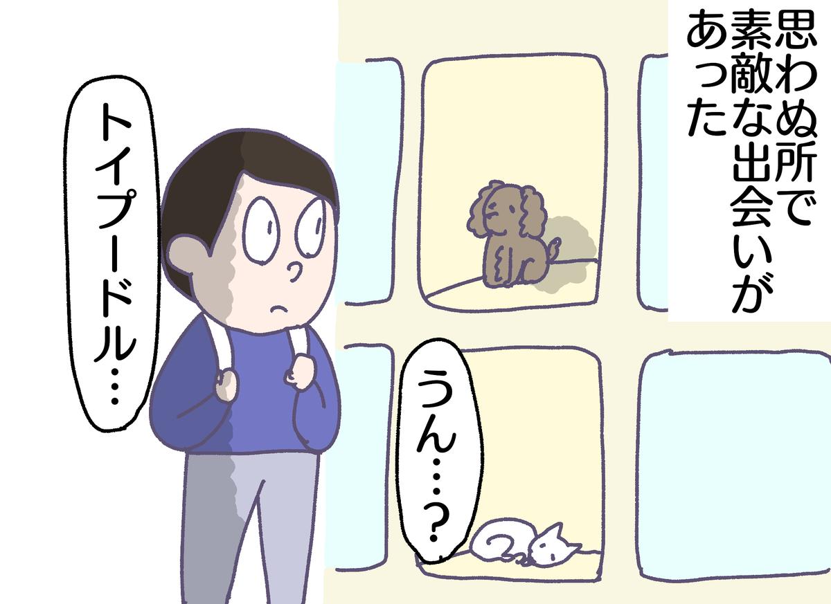 f:id:YuruFuwaTa:20190426173727p:plain