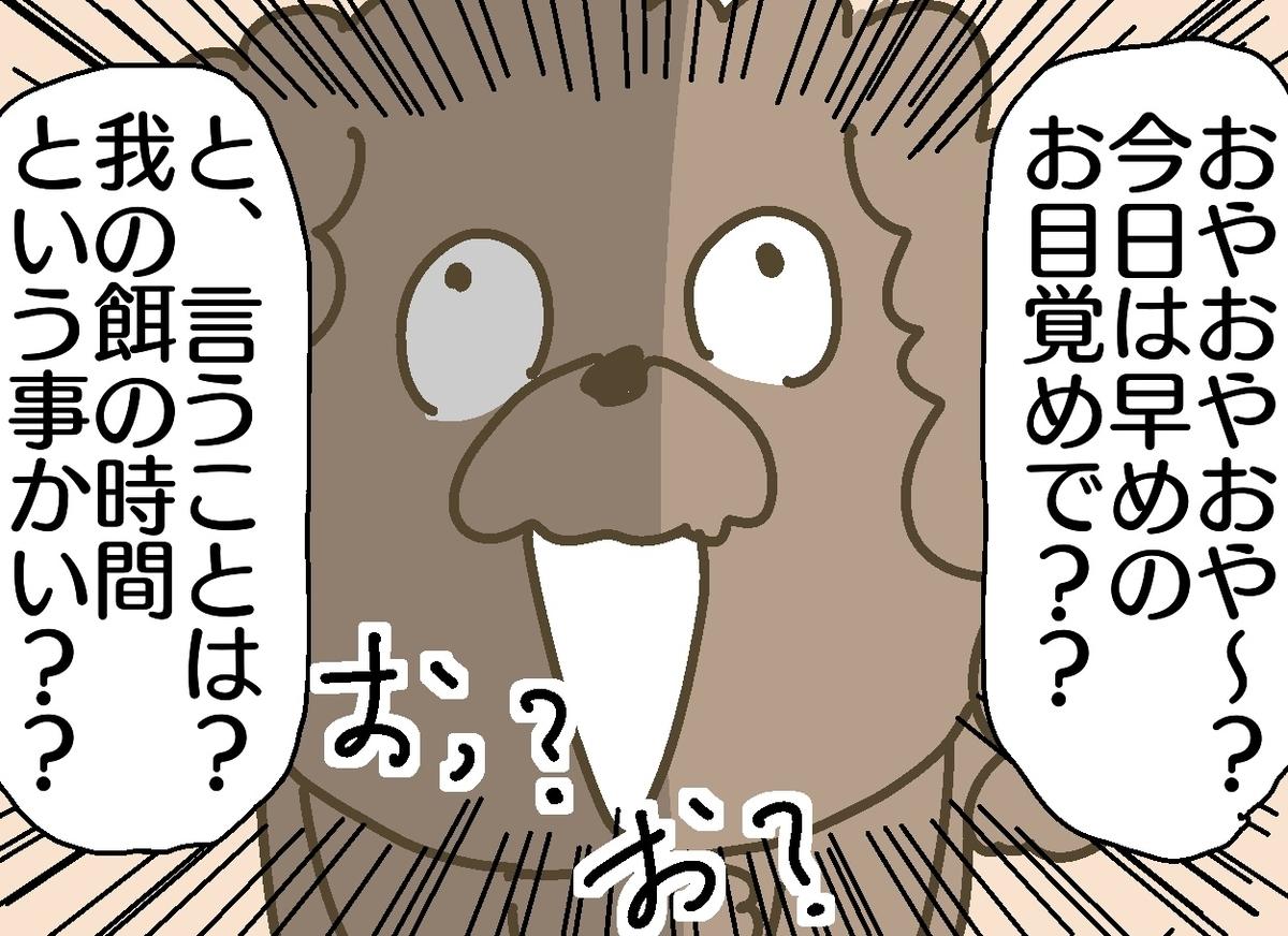 f:id:YuruFuwaTa:20190701164357j:plain