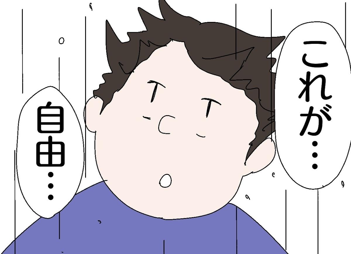 f:id:YuruFuwaTa:20191121153540j:plain