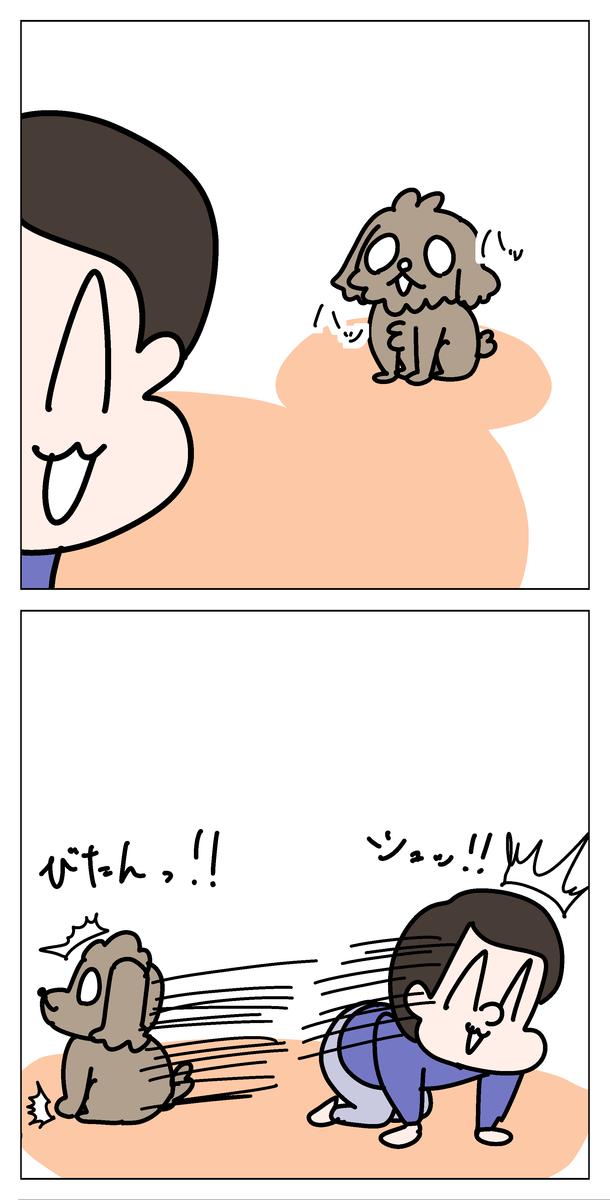 f:id:YuruFuwaTa:20200514102624p:plain