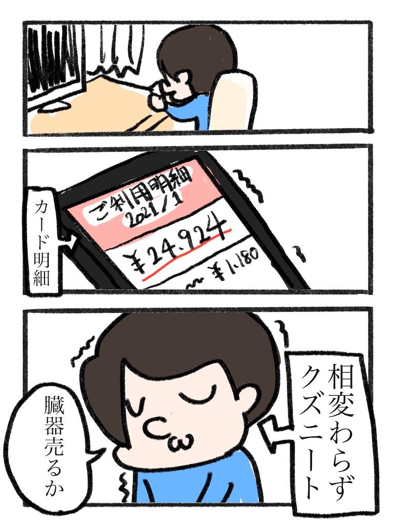 f:id:YuruFuwaTa:20201230173739j:plain
