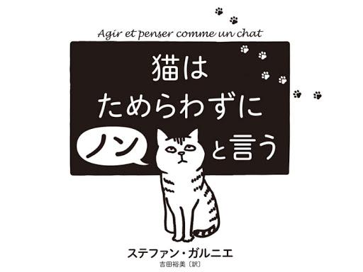 猫はためらわずにノンという
