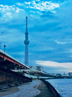 f:id:Yutaka_TAWARA:20201107155341j:plain