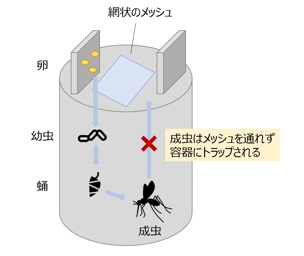 f:id:Yuuki0455:20200321225627p:plain