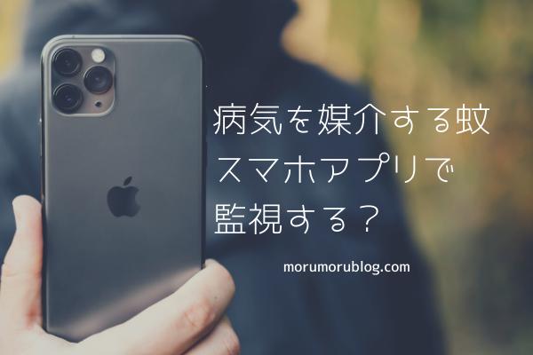 f:id:Yuuki0455:20200503064149p:plain