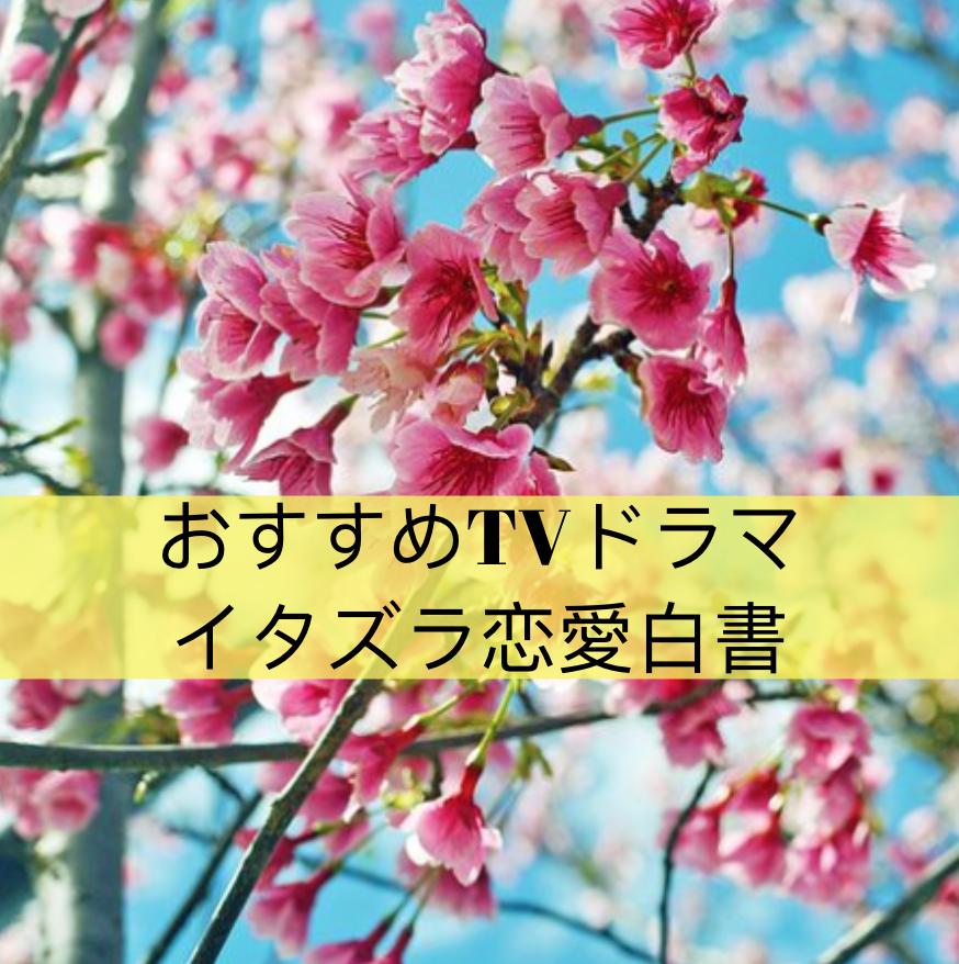 f:id:Yuuuumi:20190910192700p:plain