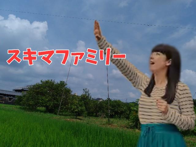 f:id:YuzuKi:20210822145318j:plain