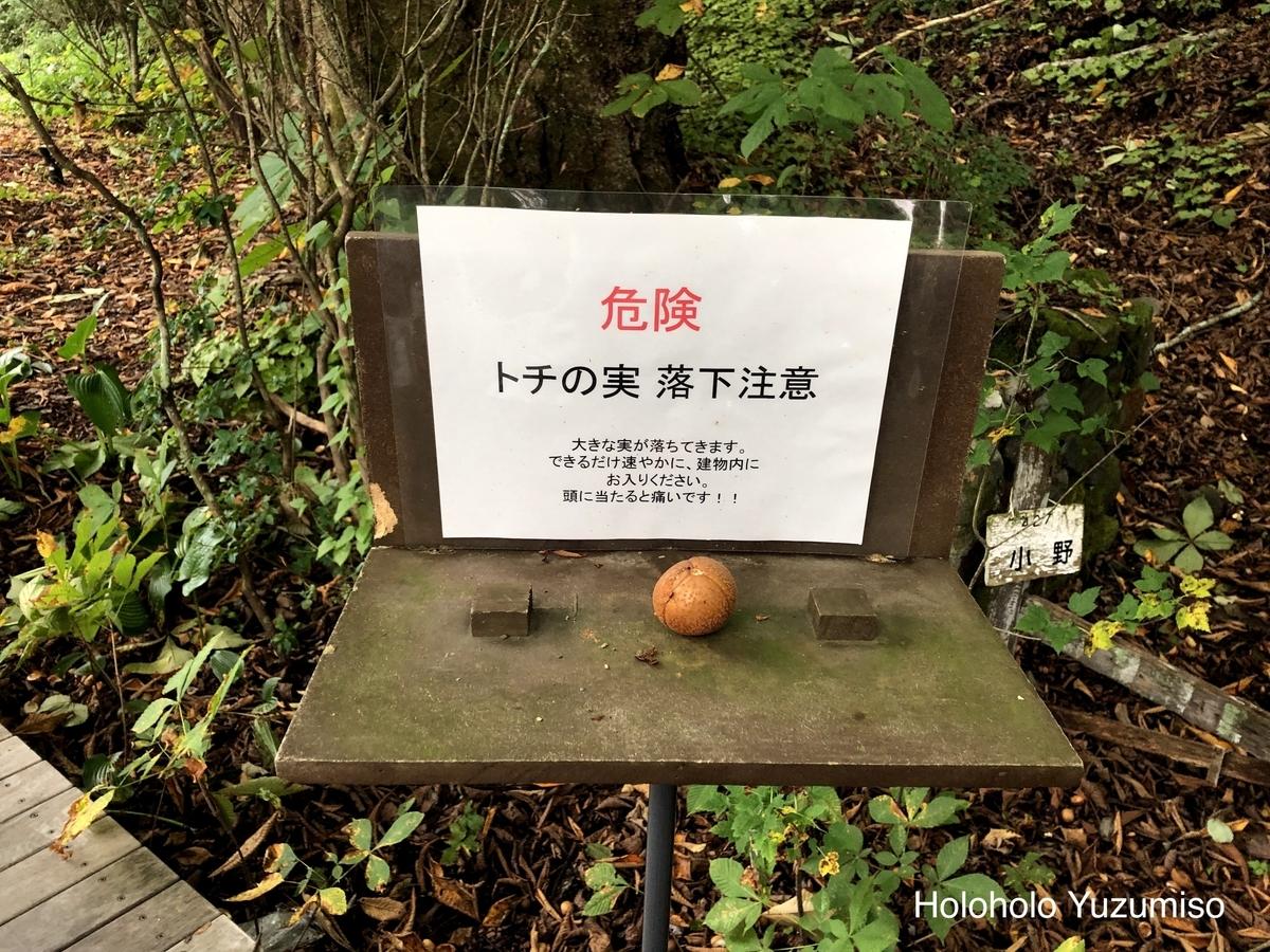 f:id:Yuzumiso:20190928080906j:plain