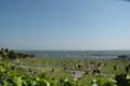 海を目の前にした広場。東京にはない風景。