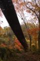 ほどほど間が透けて見える吊り橋は手作り感があってよさげ