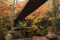 吊り橋は横幅が結構広い。なんか左の木が合成っぽい。