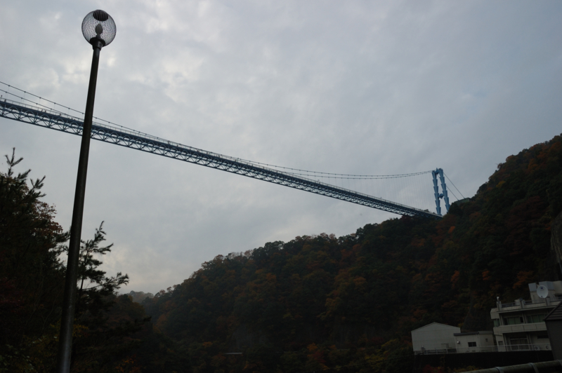 ライトがアミアミに見えて綺麗。 橋は長すぎて全部入らないぜよ。