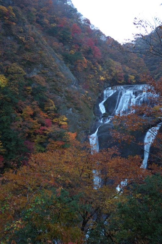 新オープンの観瀑台より。紅葉と一緒に見れますね。