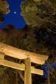 日も暮れて寒~い明治神宮。1時間半ほどかかった・・混みすぎ。