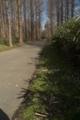 [水元公園]青々とした芝生が逆に不自然