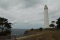 [日御碕灯台]背の高い松林からもひときわ高い灯台