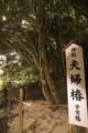 [八重垣神社]よくみると真ん中で繋がっている!