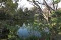 [浅草寺]池があったなんて