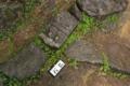 築城時に足りない石を寺社などから調達した名残りとか