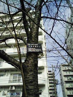 f:id:ZIN-KE:20070322095709j:image