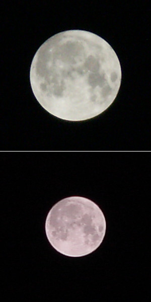 ディマージュA2(上)とDSC-F505V(下)で撮った月