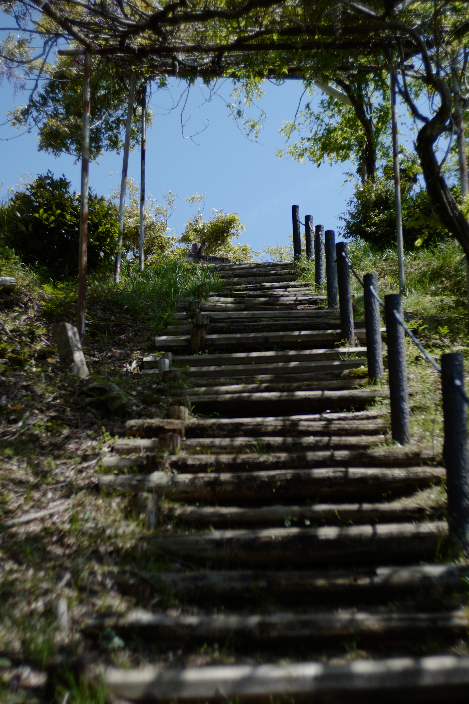 健康階段の頂上付近。