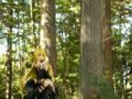 [フィギュア][アルファオメガ][ToLOVEる][風景・景観][森林]題名『金色の闇 カットNo.003』