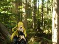 [フィギュア][アルファオメガ][ToLOVEる][森林]題名『金色の闇 カットNo.002』