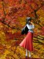 [フィギュア][メガハウス][TYPE-MOON][月姫][MELTY BLOOD][紅葉]題名『メガハウス MELTY BLOOD 遠野秋葉 カットNo.003』