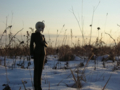 [フィギュア][MAXFACTORY][Fate/stay night][Fate/Zero][雪][夕焼け][*Season04:冬]題名『セイバー/Zero カットNo.001』