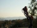 [フィギュア][トイズワークス][灼眼のシャナ][*Season01:春]トイズワークス 『灼眼のシャナS』 シャナ セレモニーVer. カットNo.011