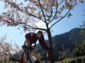 [フィギュア][トイズワークス][灼眼のシャナ][桜][*Season01:春]トイズワークス 『灼眼のシャナS』 シャナ セレモニーVer. カットNo.007