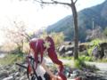 [フィギュア][トイズワークス][灼眼のシャナ][桜][*Season01:春]トイズワークス 『灼眼のシャナS』 シャナ セレモニーVer. カットNo.006