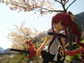[フィギュア][トイズワークス][灼眼のシャナ][桜][*Season01:春]トイズワークス 『灼眼のシャナS』 シャナ セレモニーVer. カットNo.004