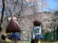 [フィギュア][コトブキヤ][D.C. ~ダ・カーポ~][桜][*Season01:春]朝倉音姫&朝倉由夢 カットNo.006