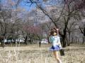 [フィギュア][コトブキヤ][D.C. ~ダ・カーポ~][桜][*Season01:春]朝倉由夢 カットNo.006