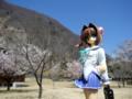 [フィギュア][コトブキヤ][D.C. ~ダ・カーポ~][桜][*Season01:春]朝倉由夢 カットNo.005