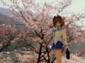 [フィギュア][コトブキヤ][D.C. ~ダ・カーポ~][桜][*Season01:春]朝倉由夢 カットNo.003