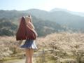[フィギュア][コトブキヤ][D.C. ~ダ・カーポ~][桜][*Season01:春]朝倉音姫 カットNo.002